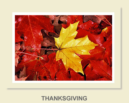 Click to view Thanksgiving Greeting Cards