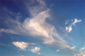 Trumpet Cloud