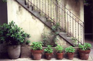 Florence Courtyard