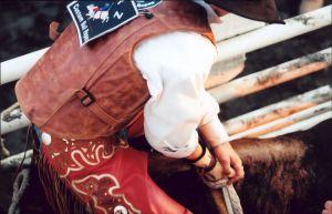 Cowboy in Chute