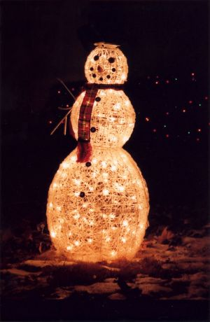 The Snowman in the Plaid Scarf