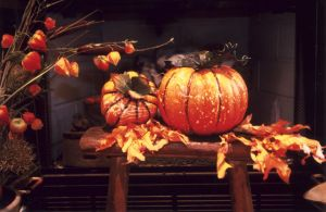 Two Pumpkins at the Hearth