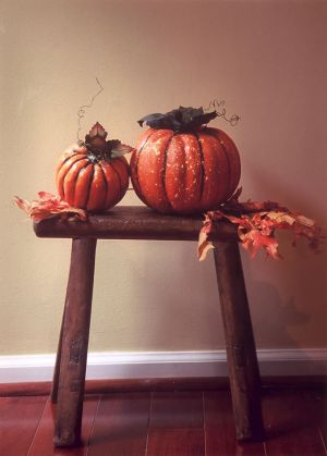 Two Pumpkins & Leaves